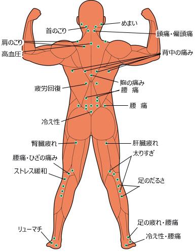人体のつぼ